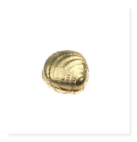 Altın Yaldızlı Midye